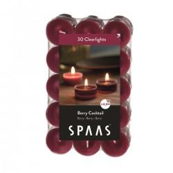 SPAAS Čajové svíčky vonné CLEAR 30ks lesní směs