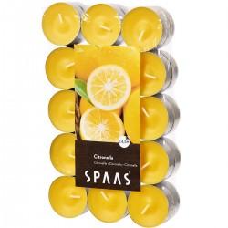 SPAAS Čajové svíčky vonné 30ks citronella