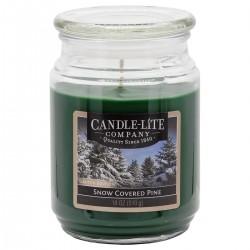 CANDLE-LITE Svíčka dekorativní ve skleněné dóze - SNOW COVERED PINE  510g