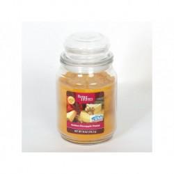 BETTER HOMES Svíčka dekorativní ve skleněné dóze - Golden Pineapple Poppy 510g
