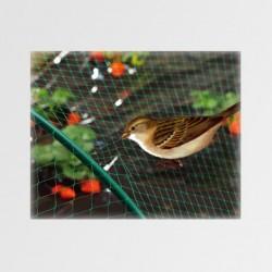 Síť proti ptákům M200 2x5m Zelená